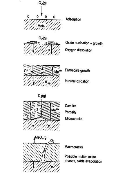 تشکیل لایه اکسیدی در حین اکسیداسیون فلز.